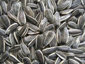 Sunflower-Seeds.jpg
